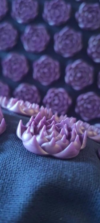 Tapis de fleurs / acupression